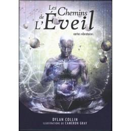 LES CHEMINS DE L EVEIL - DYLAN COLLIN