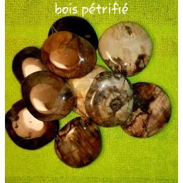 BOIS PETRIFIE PIERRE PLATE 4 CM ENVIRONS