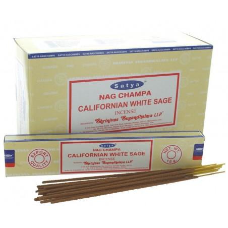 CALIFORNIAN WHITE SAGE BOX DE 12 BOITES DE 15GR
