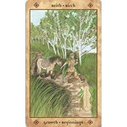 Voice of the Trees: A Celtic Divination Oracle (Anglais)