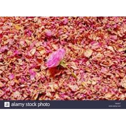 ROSE PETALE SECHEE 10 GR